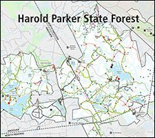 Harold Parker State Forest- Easy/ Moderate/ Difficult