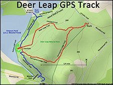 Deer Leap Natural Area- Easy