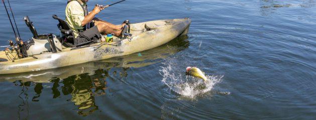 We Sell Hobie Kayaks!